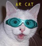 ar-catpost